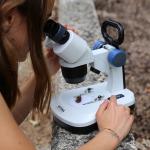 Микроскоп Optika SFX-51 20x-40x Bino Stereo