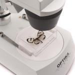 Микроскоп Optika ST-30FX 20x-40x Bino Stereo