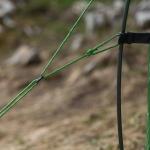 Палатка Vango Blade Pro 200 Pamir Green